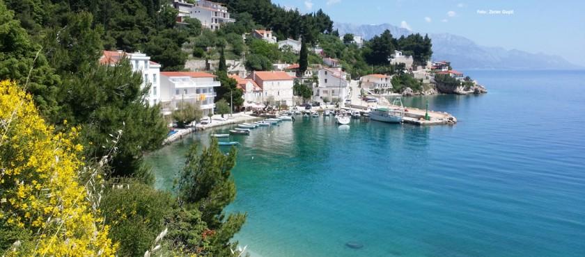Chorwacja -LAST MINUTE APARTAMENTY VILLA-VENERA- MIMICE