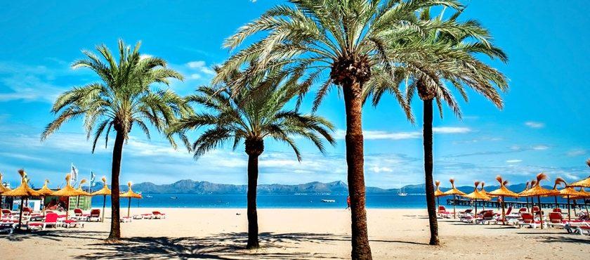 Lato 2020 na Majorce- odkryj rajskie plaże w cieniu palm!