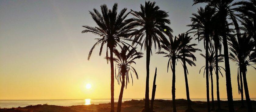 Inteligentne przedłużenie wakacji w promieniach słońca przy temperaturze +29°C.